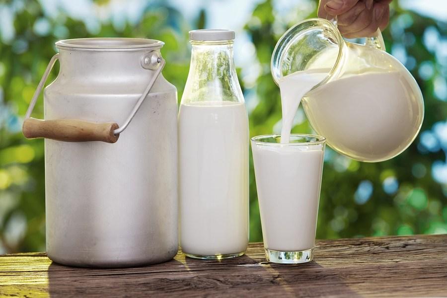 Fresh Milk | Rothes A dairy Farm